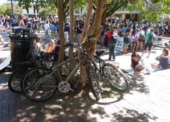 Bikes Around Pit