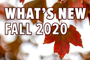 What's New Fall 2020 Decorative Image